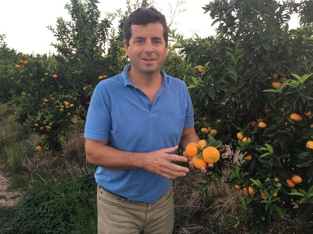Guillermo enseña mandarinas y naranjas frescas directamente del productor