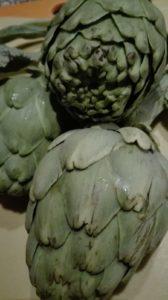 alcachofas de citrusricus